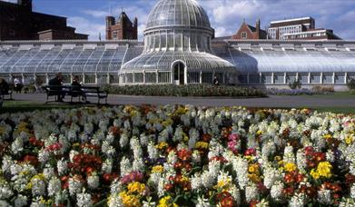Belfast Botanic Gardens and Palm House