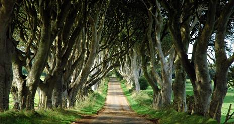Game of Thrones® Tours (Brit Movie Tours)