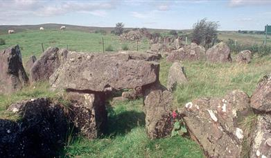 Knockoneill Court Tomb