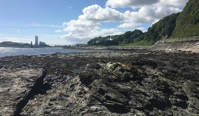 Larne's Jurassic Coastline - Waterloo Bay